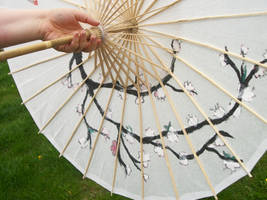 parasol 3 by mattsprettygirlTiff