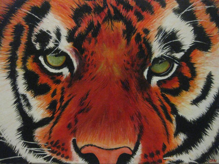 Tiger by Siiryl