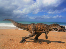 Jurassic Coast of Africa by zoome3