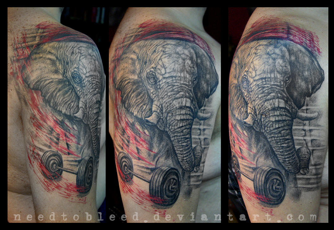elephant by Benjamin Otero by needtobleed