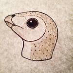 Barn Owl Leaellynasaura
