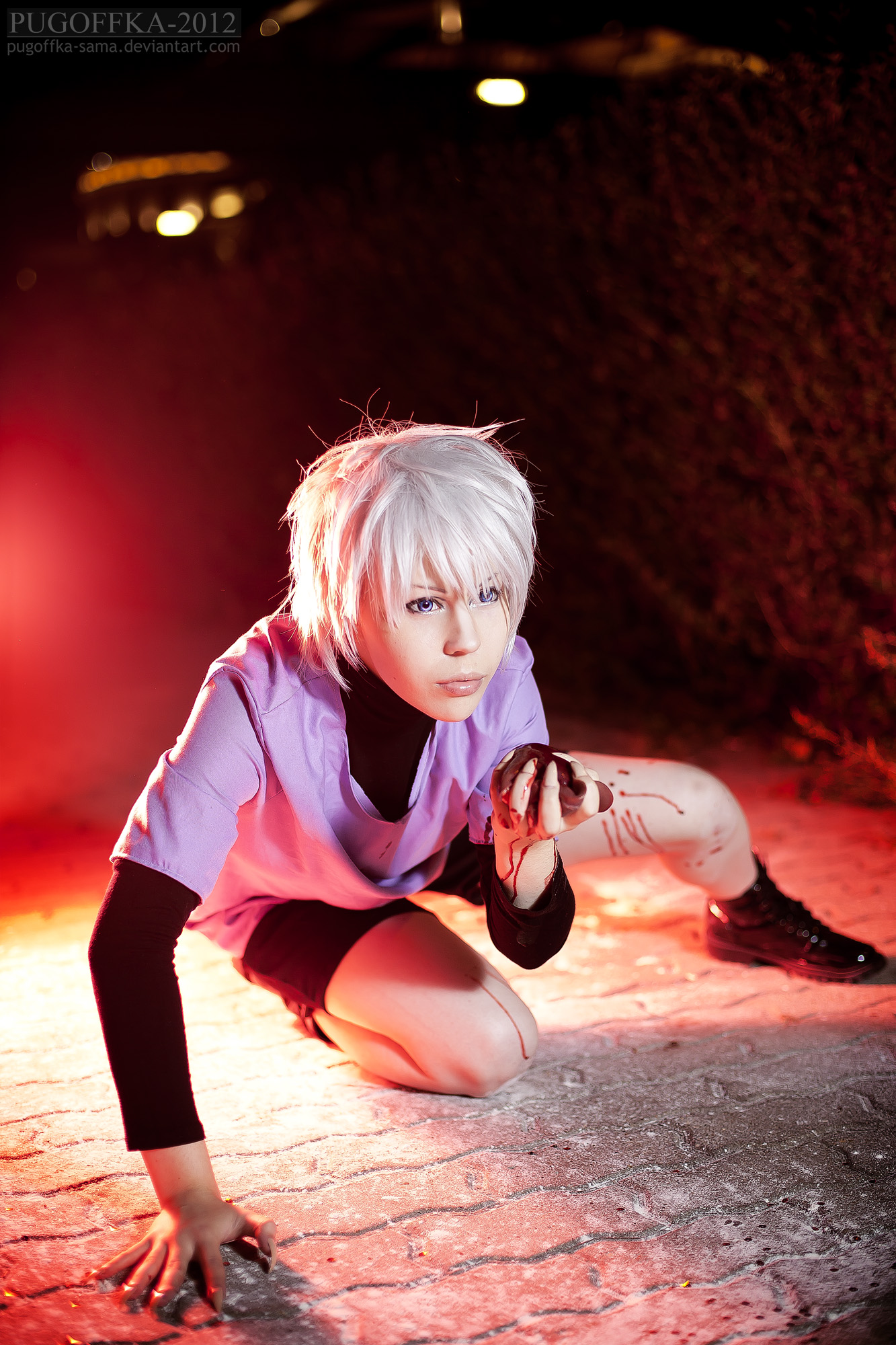 HUNTER x HUNTER : The Assassin by berylrion