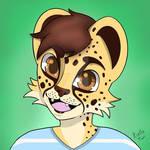 Kitto the Cheetah