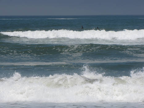 Ocean Environment 1