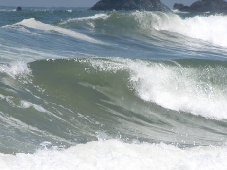 Ocean Environment 8