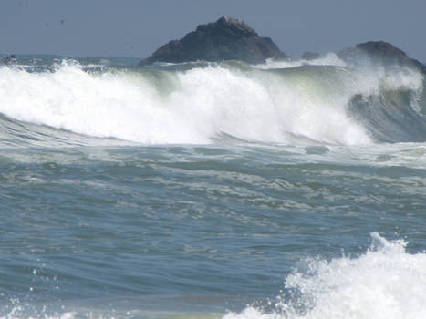 Ocean Environment 9
