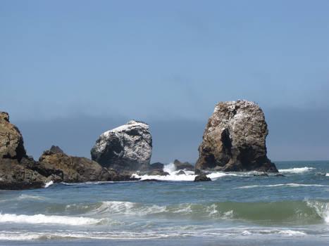 Ocean Environment 12