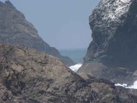 Ocean Environment 14