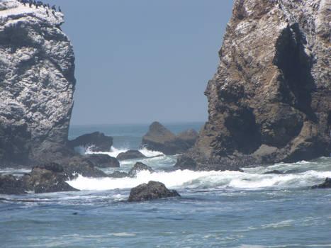 Ocean Environment 16