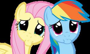 Rainbow Dash And Fluttershy PLEEEEEEASE??? Face by Spyro4287