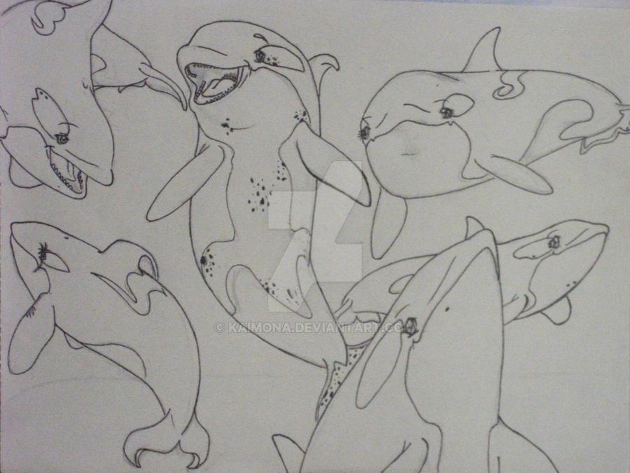 Orca OC pod. by Kaimona