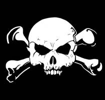 Jolly Roger The Pirate Flag