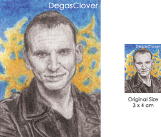 Nineth Doctor - Pencil Mini portrait