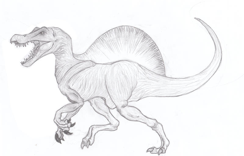 Spinosaurus Full Body By Spinosaurontop On DeviantART