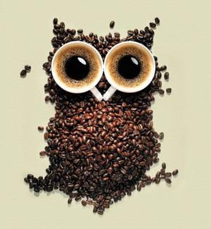 Coffee Owl..