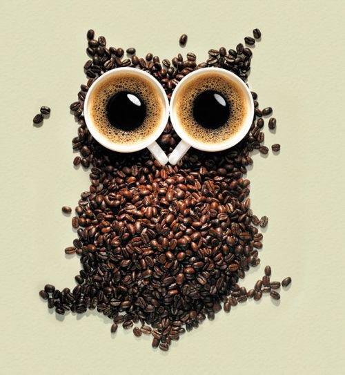Coffee Owl.. by Manso0n