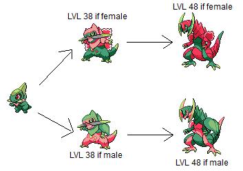 Pokemon Axew Evolution Images | Pokemon Images