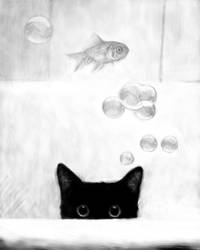 Cat Fish Bubbles BW
