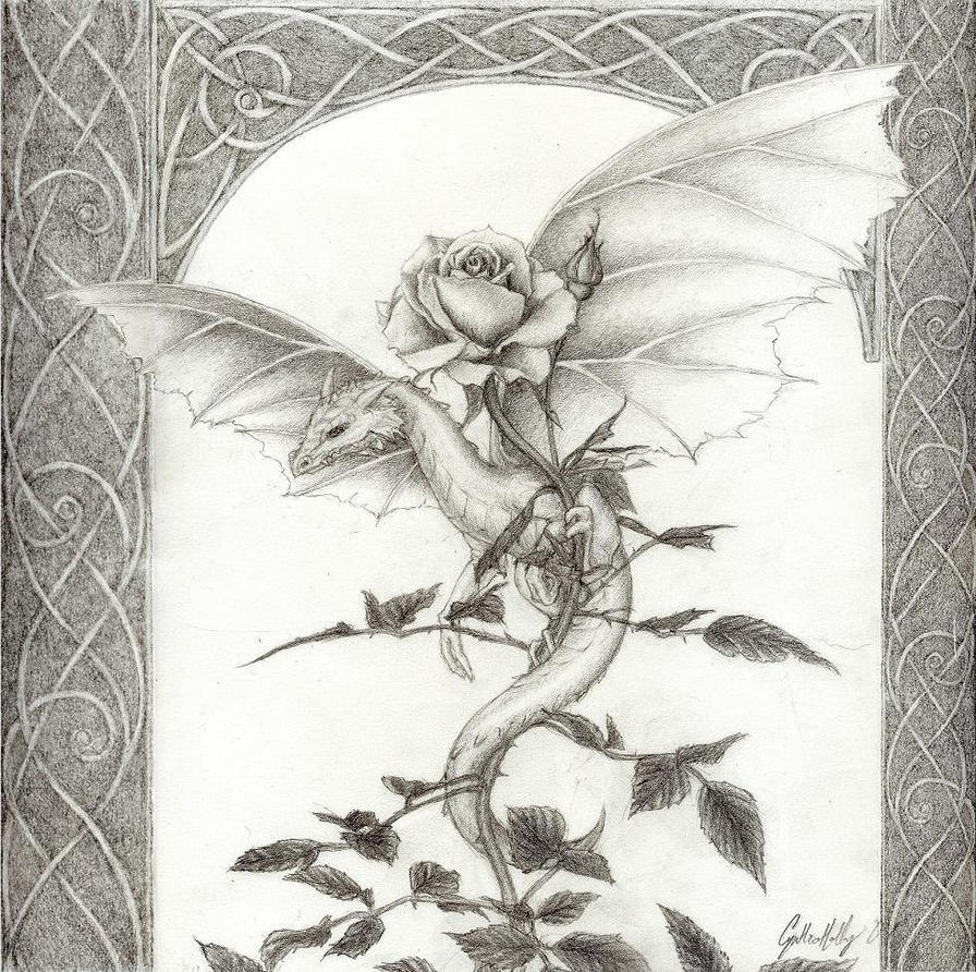 Dragon Rose -pencil by artaddict on DeviantArt