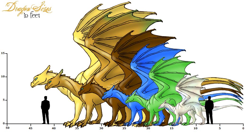 Pernese Dragon Sizes by Sporelett on DeviantArt