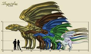Pernese Dragon Sizes v2