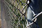 Fenced In v2