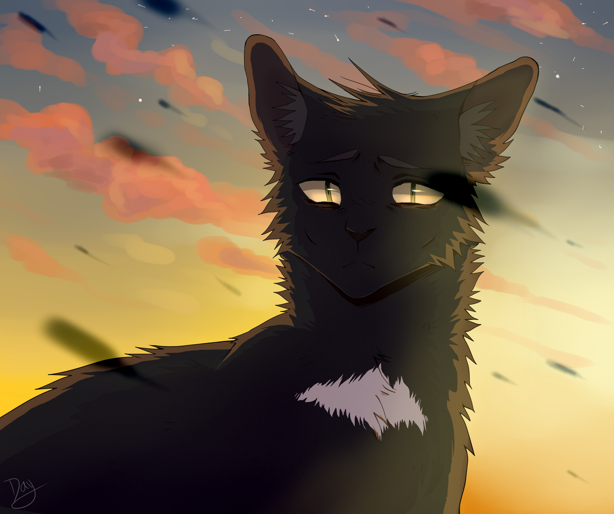 Ravenpaw by lulucampo