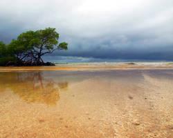 Dark Clouds at the Beach by n1kL4s