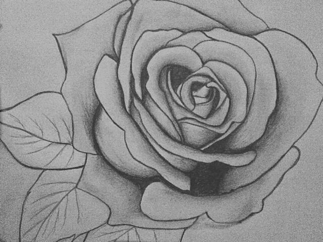 Pencil Rose Drawing by KraylaHi on DeviantArt  Pencil Rose Dra...