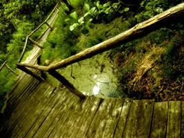 FootBridge of Nature by vlr