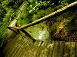 FootBridge of Nature