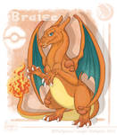 Braise the Charizard by Lougan-StellgaLou
