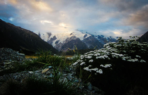 Mount Sefton, New Zealand by Ashtyn-Renee