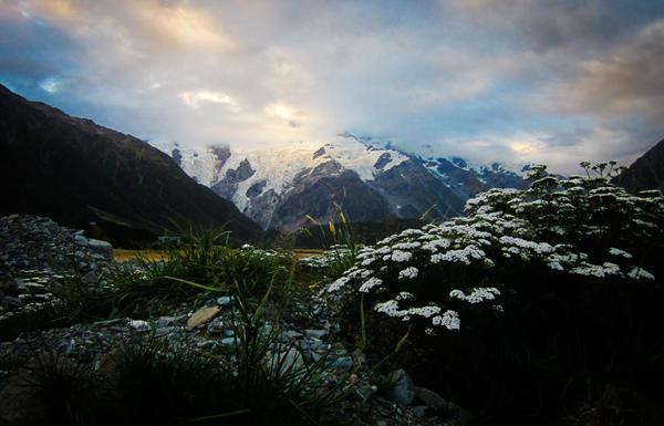 Mount Sefton, New Zealand by Ashtyn-Renee