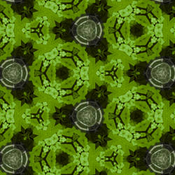 metal in kaleidoscope of green by TanithLipsky