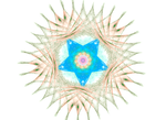 transparent fractal stock 28 march 2019 2 by TanithLipsky