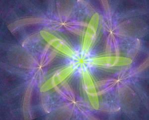 8ety8ru flower fractal stock