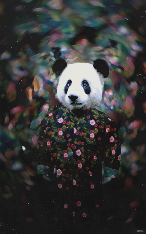 Mr Panda by Di3sel