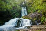 NZ falls