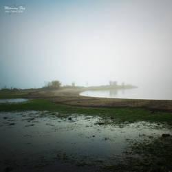 Morning fog by JTphoto