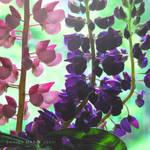 lovely flowers_55