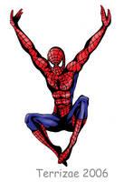 Spiderman by Terrizae