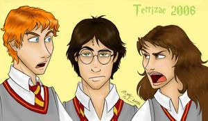 HP-The Trio by Terrizae