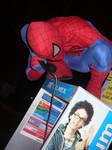 the amazing Spiderman cosplay 2