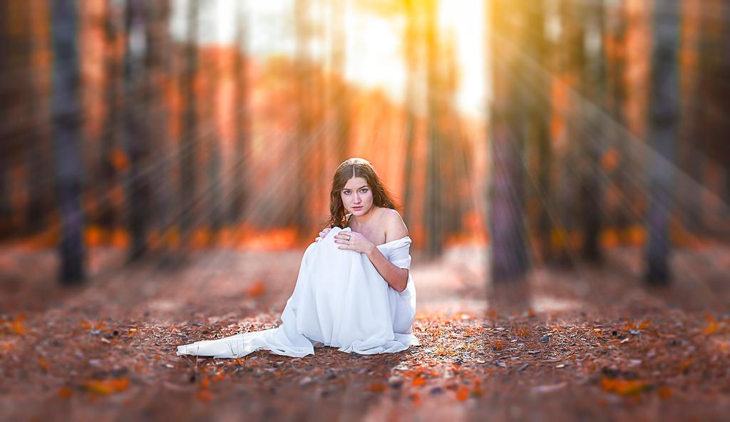 Autumn Effect DigitalArt
