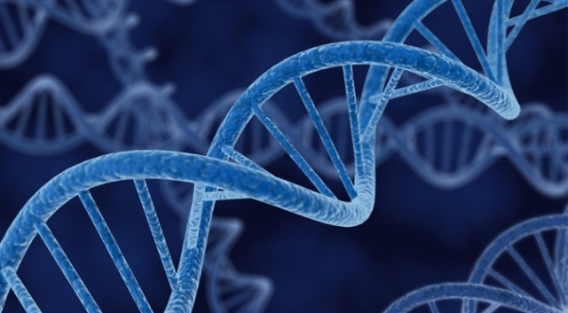 DNA-640x353 by somethingelse77
