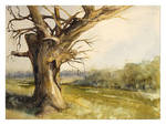 Landscape with willow