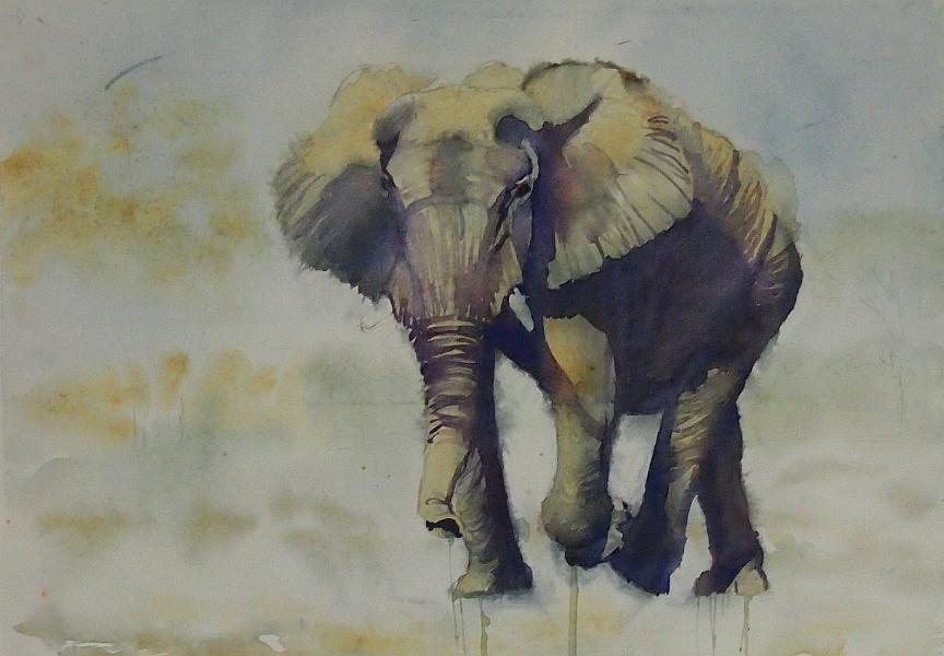slon - szkic by modliszqa