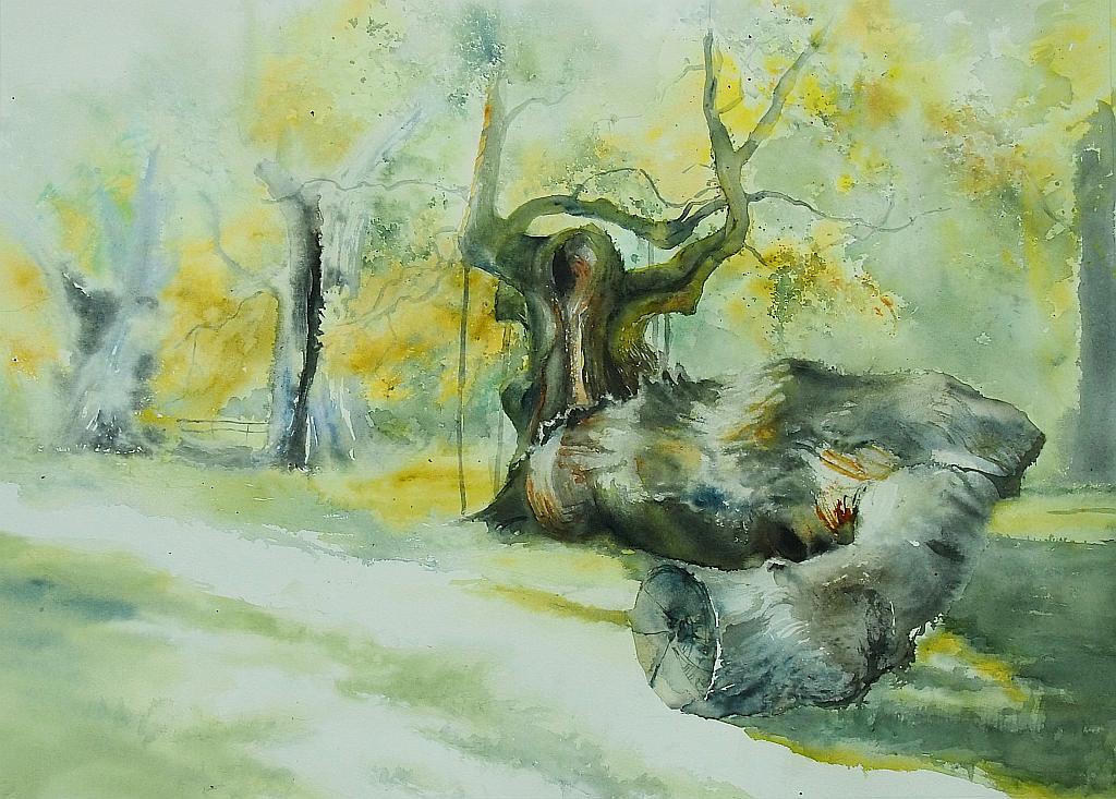 Oaks of Rogalin by modliszqa