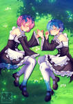 Commission : Ram and rem